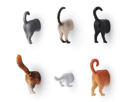 Cat Butts?